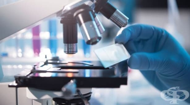 Американски учени работят върху тест за откриване на рак чрез дъвка - изображение