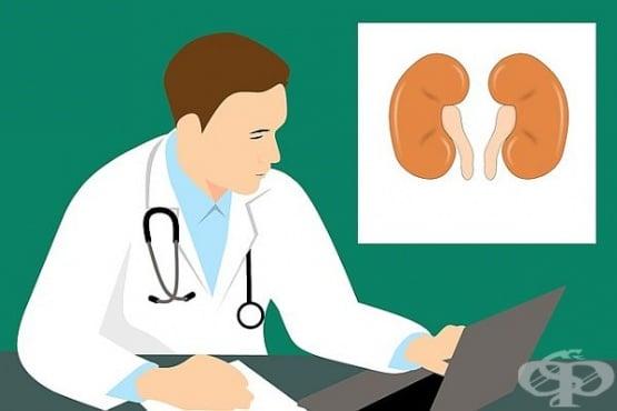 Същност, симптоми и лечение на цистит - изображение