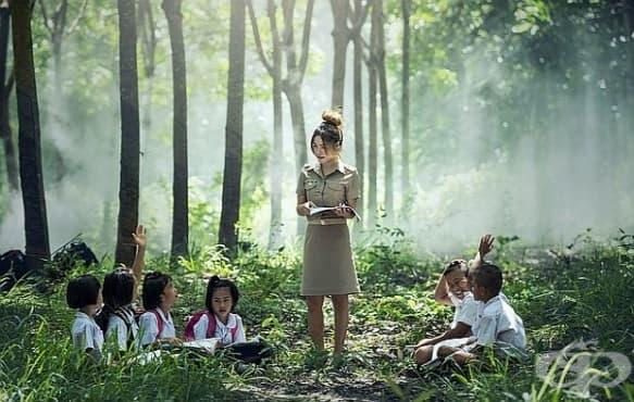 Проучване разкрива ползите за здравето на децата от обучението сред природата - изображение