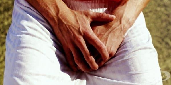 Удар в слабините при мъжете може да е причина за репродуктивни проблеми - изображение