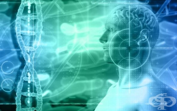 Умората намалява при стимулация с електрически ток, сочи изследване на ВВС на САЩ - изображение