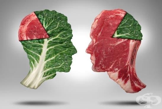 Вегетарианците са по-интелигентни и съпричастни, твърдят учени - изображение