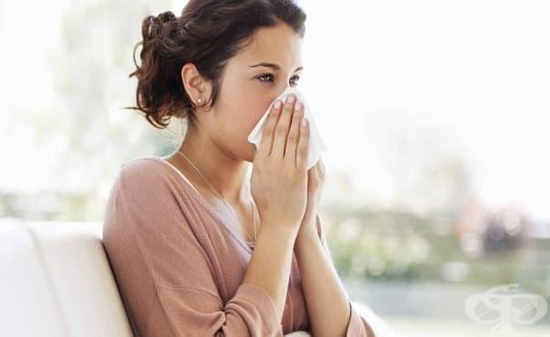 Специалистите обясняват защо се разболяваме по-често при смяната на сезоните - изображение