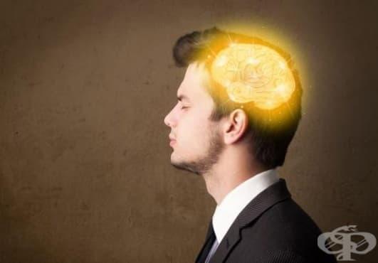 Високото кръвно на млади години състарява мозъка по-бързо - изображение