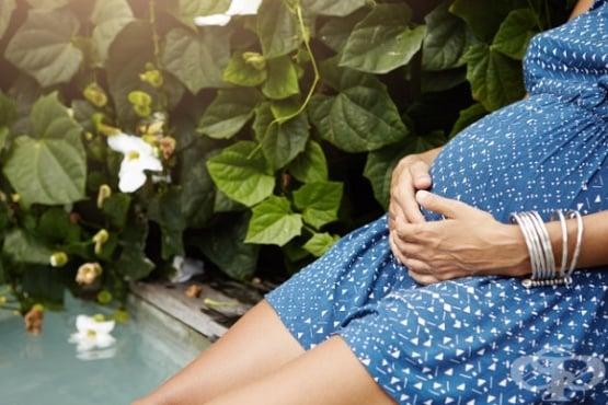 Водните раждания са също толкова безопасни, колкото нормалните  - изображение