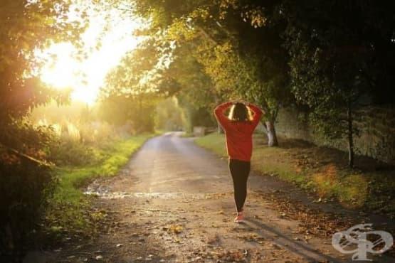 Британски учени: Ходенето пеша води до дълготрайни ползи за здравето - изображение