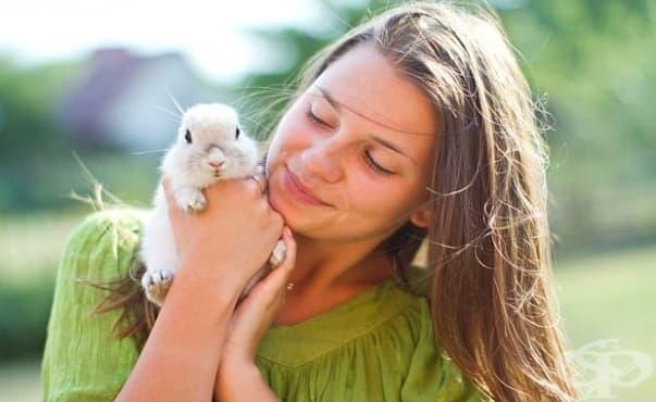 Животните имат способността да лекуват стопаните си - изображение