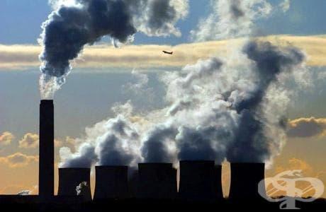 Като най-голям замърсител на околната среда хората посочват самите себе си - изображение