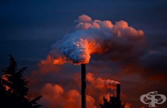 Американско проучване разкрива връзка между замърсения въздух и развитието на психични разстройства - изображение