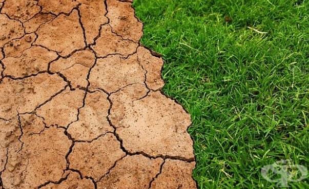 Глобалното затопляне може да предизвика повече случаи на хранително отравяне - изображение