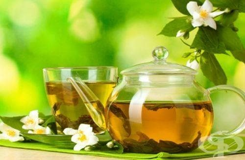 Зеленият чай подсилва паметта и забавя деменцията - изображение