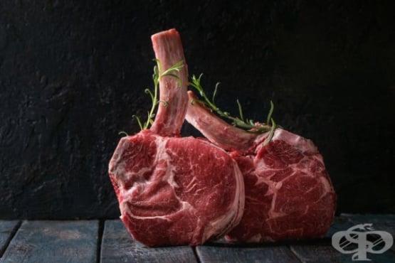 Диета Карнивор - основана единствено на месо - изображение