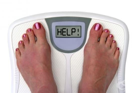 Диета №8 - при затлъстяване - изображение