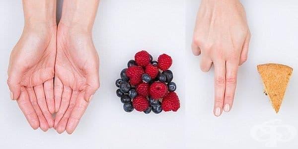 Как да определим размера на необходимата ни порция храна с помощта на дланта - изображение