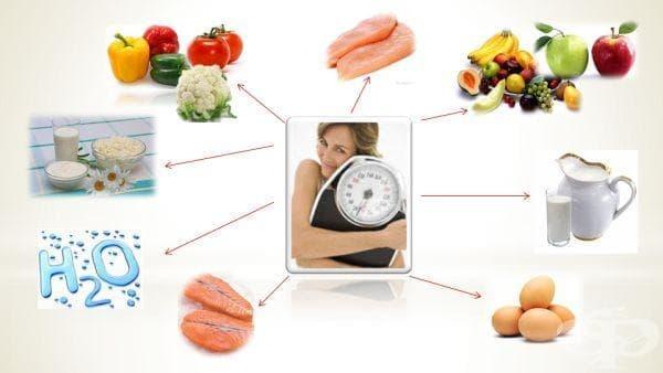 Едноседмична разтоварваща диета за лесно отслабване (I част: 1-4 ден) - изображение