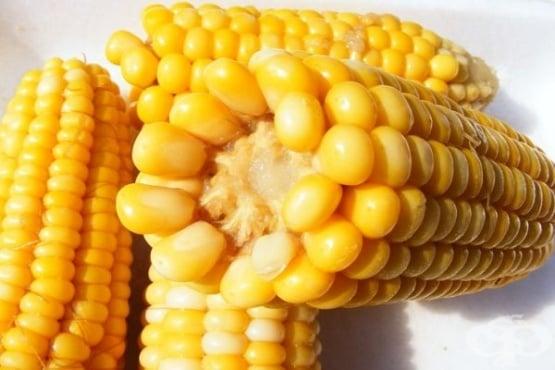 Варианти за отслабване с царевица (варена, консервирана или царевична каша) - изображение
