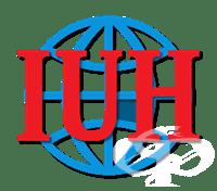 Частна профилирана гимназия към INTERNATIONAL UNIVERSITY HOLDING, гр. София - изображение