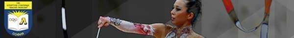 "166 Специализирано спортно училище ""Васил Левски"", гр. София - изображение"