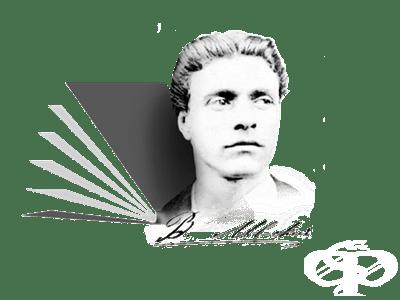 """Средно училище """"Васил Левски"""", гр. Елин Пелин - изображение"""