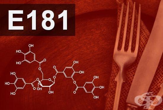 E181 - Танинова киселина, танини (Tannic acid, tannins) - изображение