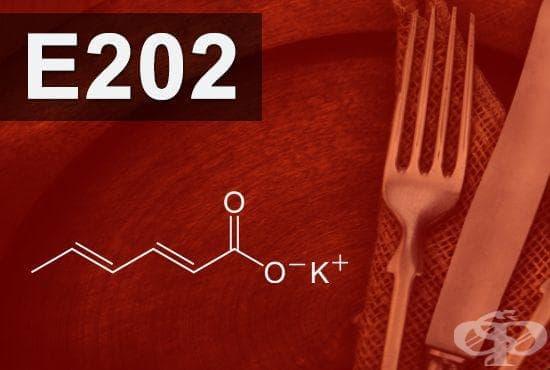 E202 - Калиев сорбат (Potassium sorbate) - изображение