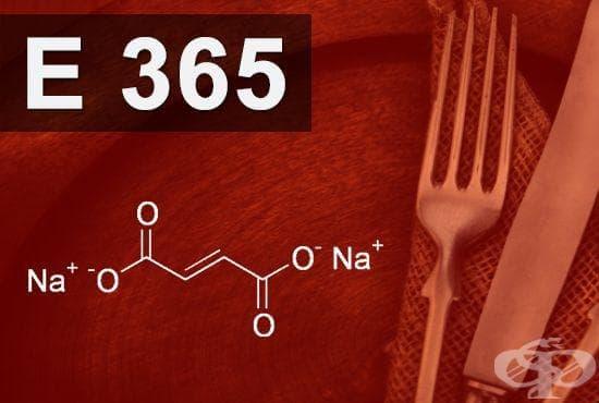 E365 - Натриев фумарат (Sodium fumarate) - изображение