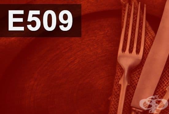 E509 - Калциев хлорид (Calcium chloride) - изображение