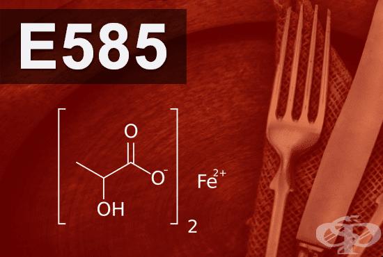E585 - Железен лактат (Ferrous lactate) - изображение