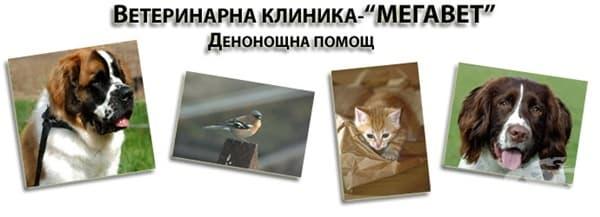 "Денонощна ветеринарна клиника ""Мегавет"", гр. София - изображение"
