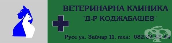 """Ветеринарна клиника """"Д-р Коджабашев"""", гр. Русе - изображение"""