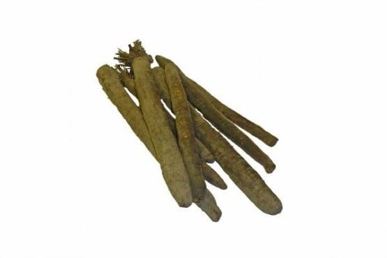 Черен корен - полезни свойства и вреда - изображение