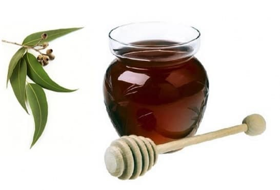 Евкалиптов мед - изображение
