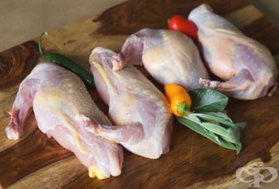 Месо от фазан - изображение