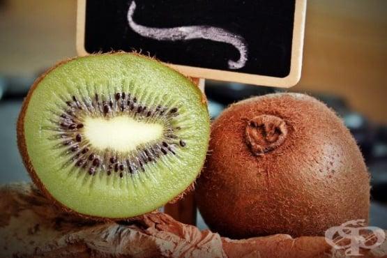 Ползи и противопоказания на плодовете киви - изображение
