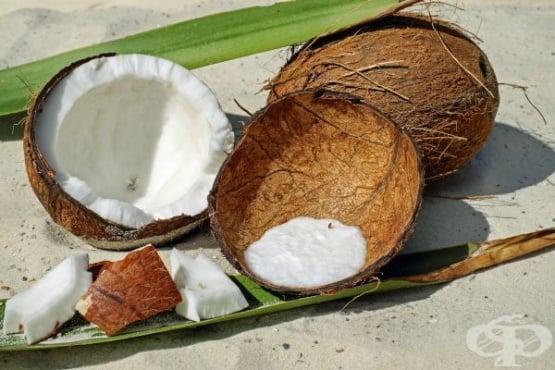 Кокос (кокосов орех) - полезни и вредни свойства - изображение