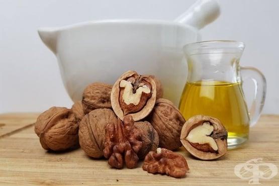 Орехово масло – употреба, състав и здравни ползи - изображение