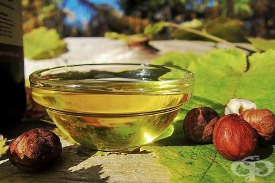 Лешниково масло - част 1 - изображение