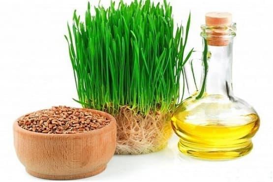 Масло от пшеничен зародиш - изображение