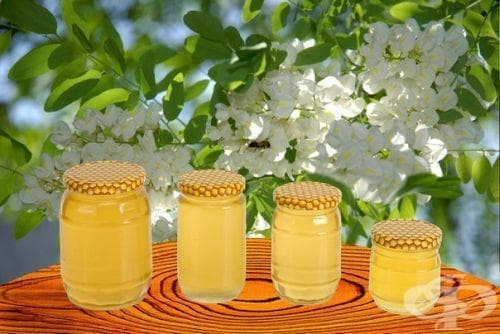 Акациев мед - изображение