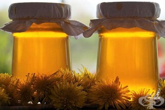 Мед от глухарче – природен еликсир в бурканче - изображение