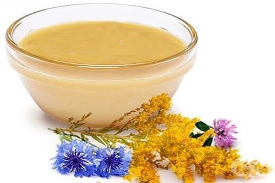 Мед от метличина - изображение