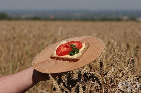 Ръжено брашно – състав, ползи и противопоказания - изображение