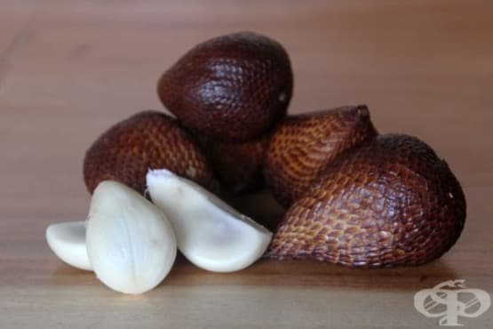 Салак (змийски плод) - изображение