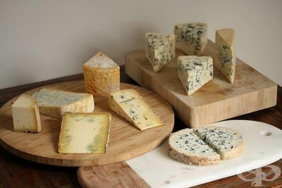 Синьо сирене - изображение