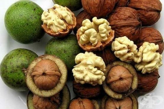 Зелени орехи - изображение