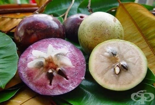 Звездовидна ябълка - изображение