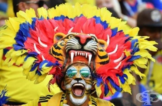 Най-впечатляващите фенове от Световното първенство по футбол в Русия - изображение