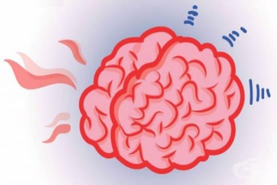 7 странни факта за мозъка, за които никой не ви е казвал - изображение