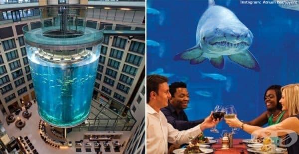 11 нереални подводни ресторанта, от които трябва да посетите поне един - изображение