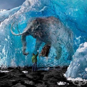 25 изумителни снимки от различни части на света, които ще докоснат сетивата ви - изображение
